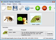 Flash Card Widget Iweb Flash Builder Scroller Viewport